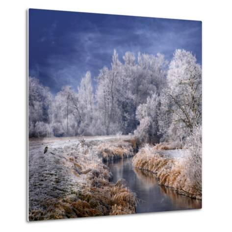 Winter Stream-Philippe Sainte-Laudy-Metal Print