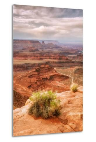 Beautiful Dead Horse Point-Vincent James-Metal Print