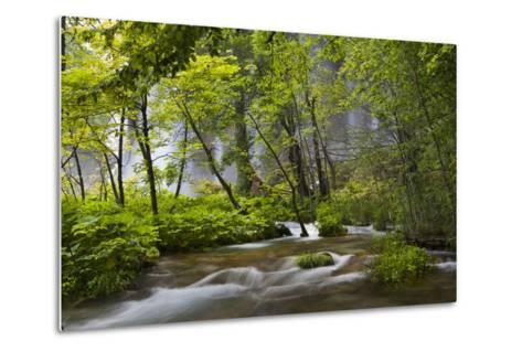Upper Lakes, Waterfall Galovacki Slap, Plitvice Lakes, Plitvicka Jezera, Croatia-Martin Zwick-Metal Print