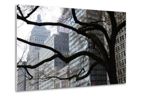 Buildings on Michigan Avenue Through a Leafless Tree in Early Spring-Paul Damien-Metal Print