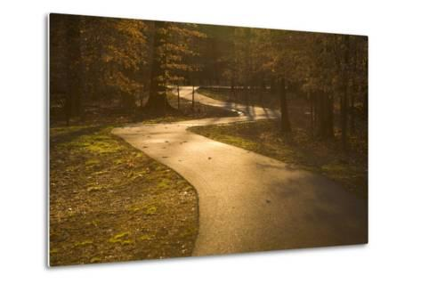 The Winding Matthew Henson Trail, a Greenway for Hikers and Cyclists-Stephen St^ John-Metal Print