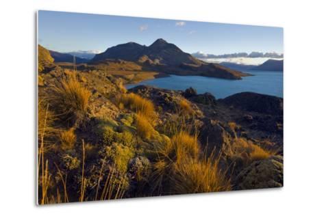 Dawn Light Strikes Grasslands and a Beach Along Lago San Martin-Beth Wald-Metal Print