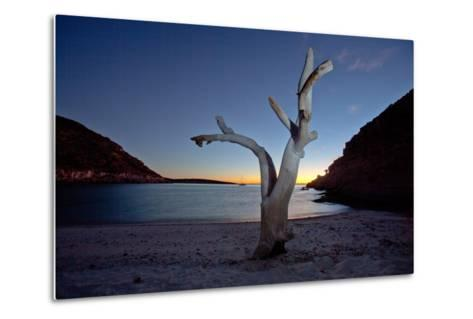 Oddly Placed Driftwood and an Anchored Sailboat in a Secluded Cove-Ben Horton-Metal Print