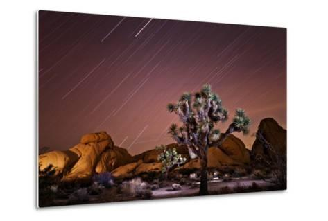 Star Trails over Joshua Trees and Granite Formations in the Desert-Ben Horton-Metal Print