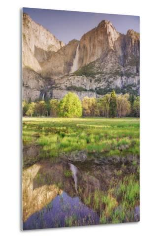 Yosemite Falls and Spring Reflection-Vincent James-Metal Print