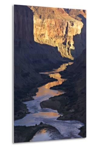 The Colorado River and Canyon Cliffs Reflect Sunlight at Nankoweap-Derek Von Briesen-Metal Print