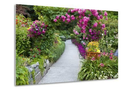 Rose Garden at Butchard Gardens in Full Bloom, Victoria, British Columbia, Canada-Terry Eggers-Metal Print