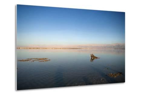 Couple in Healing Mud, Dead Sea, Israel-David Noyes-Metal Print