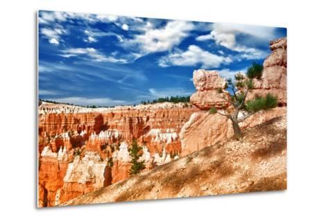 Bryce Amphitheater - Utah - Bryce Canyon National Park - United States-Philippe Hugonnard-Metal Print