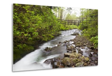 Necarney Creek, and Suspension Bridge, Oswald West State Park, Oregon, USA-Jamie & Judy Wild-Metal Print