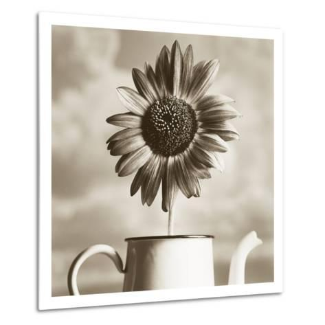 Sunflower Clouds-TM Photography-Metal Print