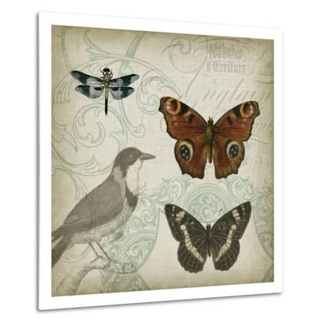 Cartouche and Wings IV-Jennifer Goldberger-Metal Print