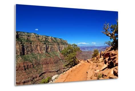 Cedar Ridge - Grand Canyon - National Park - Arizona - United States-Philippe Hugonnard-Metal Print