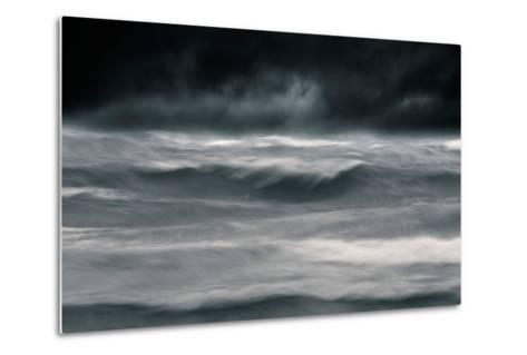 Black Wonder-David Baker-Metal Print