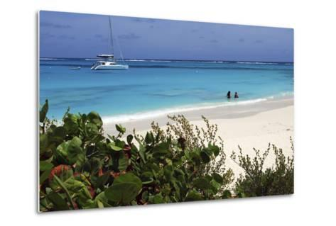 Swimming the Waters of Prickly Pear Island with Festiva Sailing Vacations-Lynn Seldon-Metal Print
