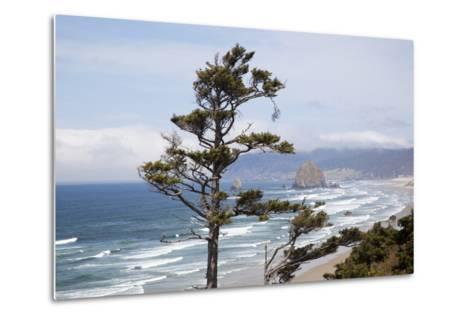 View of Haystack Rock and Cannon Beach, from Highway 101, Oregon, USA-Jamie & Judy Wild-Metal Print