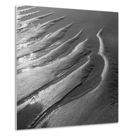 Creepers Designs and Pebble on Sand, Porbandar--Metal Print