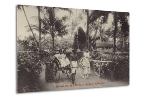 Ginricksha and Bullock Hackery in Colombo--Metal Print