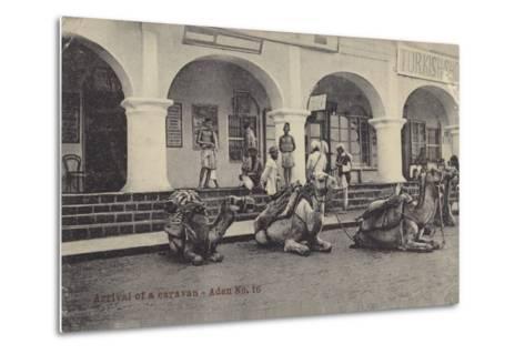 Arrival of a Caravan, Aden--Metal Print