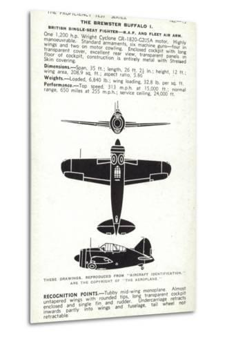 Brewster Buffalo, American Fighter Aircraft--Metal Print