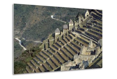 Terraces, Machu Picchu--Metal Print