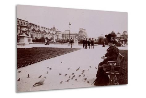 Woman Feeding Birds in the Jardin Des Tuileries--Metal Print