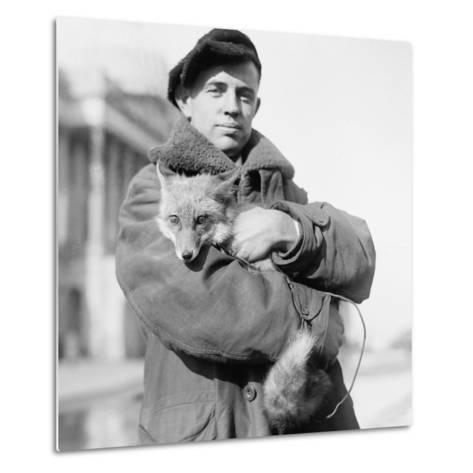 Portrait of a Man Holding His Pet Fox in Washington DC, 1918--Metal Print