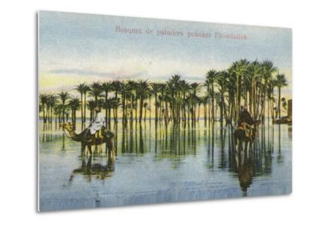 Submerged Palm Trees During the Nile Floods, Egypt--Metal Print