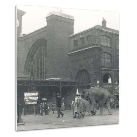 Elephants Walking from the Docks Passing Kings Cross Station on the Way to Zsl London Zoo-Frederick William Bond-Metal Print
