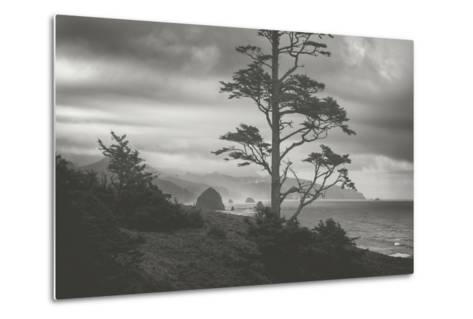 Blustery Morning View From Ecola Point, Oregon Coast-Vincent James-Metal Print