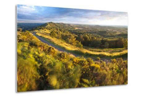 Malvern Hills, Worcestershire, England, United Kingdom, Europe-Matthew-Metal Print