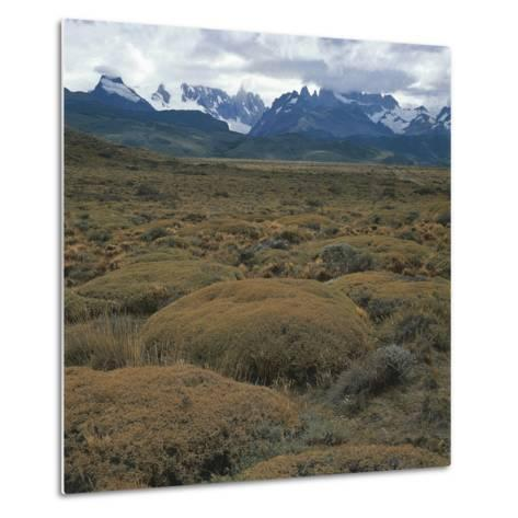 Semi-Desert Steppe with Plants of Mulinum Spinosum, the Group of Fitz Roy in the Background--Metal Print