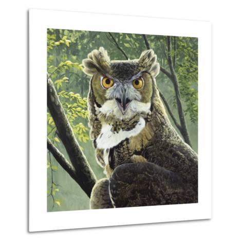 Great Horned Owl-Fred Szatkowski-Metal Print