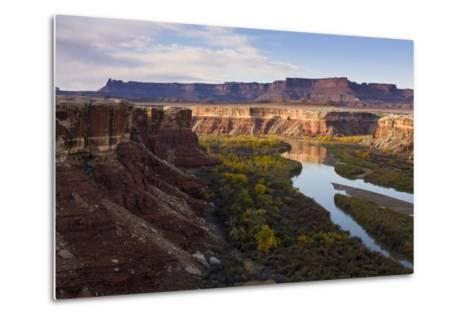 The Green River as Seen from the White Rim Trail in Canyonlands National Park, Utah-Sergio Ballivian-Metal Print