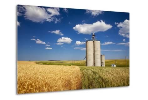 USA, Washington, Davenport. Silos Surrounded by Fields of Wheat-Terry Eggers-Metal Print