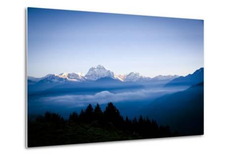 Dhaulagiri, an 8000 Meter Peak in the Morning Sun, Poon Hill, Annapurna Circuit, Ghorepani, Nepal-Dan Holz-Metal Print