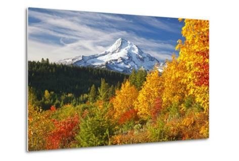 Fall Colors Add Beauty to Mt. Hood, Mt. Hood National Forest, Oregon,-Craig Tuttle-Metal Print