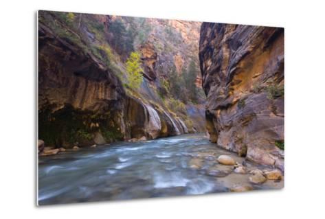 USA, Utah, Zion National Park. the Narrows of the Virgin River-Jamie & Judy Wild-Metal Print