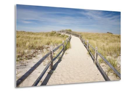 Dunes on Cape Cod National Sea Shore in Cape Cod, Boston, Usa--Metal Print
