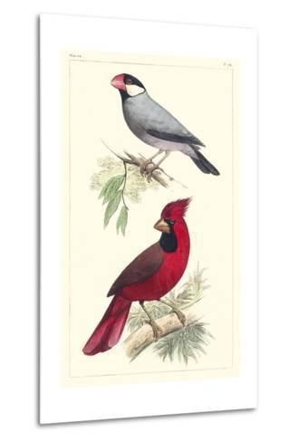 Lemaire Birds I-C.L. Lemaire-Metal Print