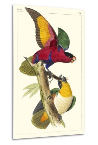 Lemaire Parrots I-C.L. Lemaire-Metal Print