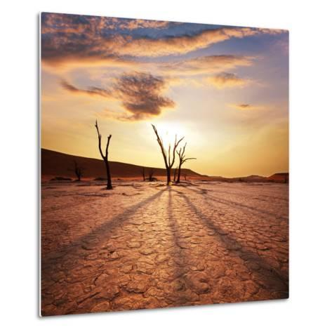 Dead Valley in Namibia-Andrushko Galyna-Metal Print