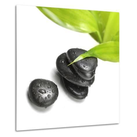 Black Stones and Green Leaf-Rudchenko Liliia-Metal Print