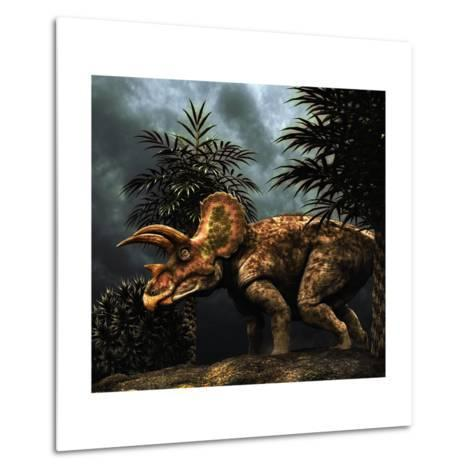 Triceratops Was a Herbivorous Dinosaur from the Cretaceous Period--Metal Print