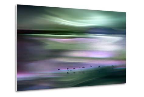 Migrations - Green Sky-Ursula Abresch-Metal Print