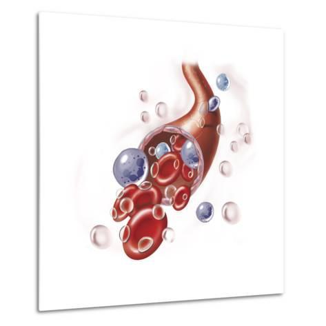 Arteriole with Red Blood Cells, White Blood Cells and Oxygen--Metal Print