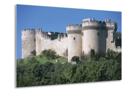 Trees in Front of a Castle, Fort Saint Andre, Languedoc-Roussillon, Villeneuve-Les-Avignon, France--Metal Print
