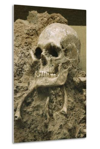 Skull from Escoural Cave. Neoli?Tco Middle-End. Archaeology Museum. Montemor-O-Novo. Portugal--Metal Print
