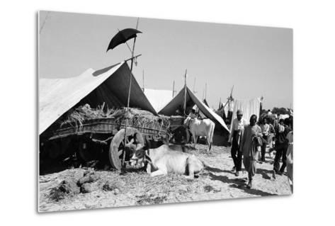 Tent Identifier Umbrella, Voutha Fair, Gujarat, India, 1983--Metal Print