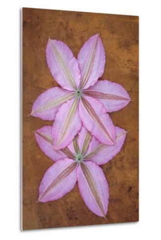 Purple Flowers-Den Reader-Metal Print